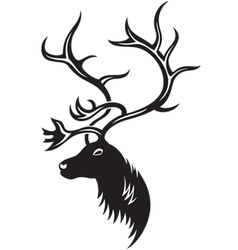 head of deer vector image
