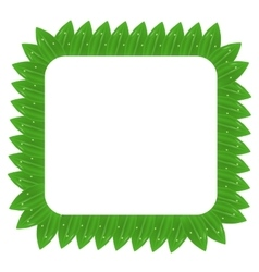 Square Green Leaves Frame vector image