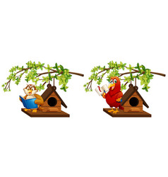 Owl and parrot reading book in birdhouse vector