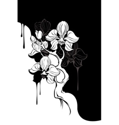 Monochrome orchid vector