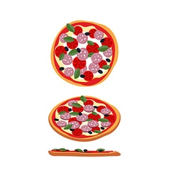 Pizza with tomatoes and sausage food top view side vector