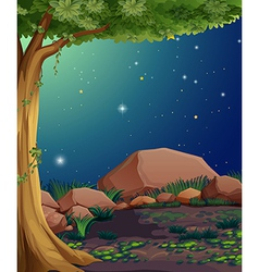 A rocky forest vector