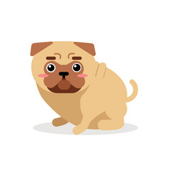 Cute cartoon pug dog character vector