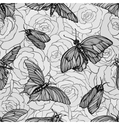 Seamless pattern with butterflies on roses vector