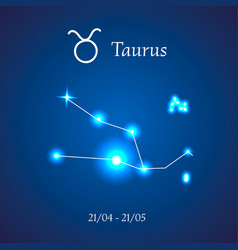 Zodiac constellation taurus vector