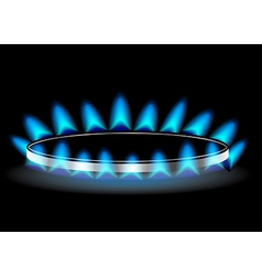 gas stove burner vector image