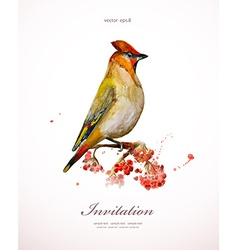 Watercolor painting wild bird at nature in vector