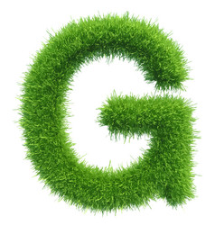 capital letter g from grass on white vector image vector image