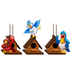 three parrot macaw birds in birdhouse vector image