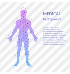 Medical background human anatomy vector