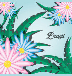 Brazil design with flowers and leaves vector