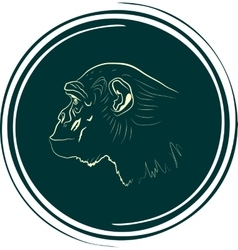 monkey face outline silhouette vector image