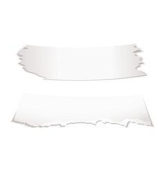 Paper scraps vector image