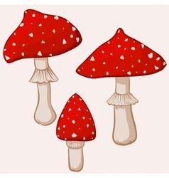 cartoon amanita muscaria mushrooms vector image