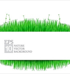 Nature background with green grass 02 380x400 vector