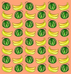 Watermelon and banana vector