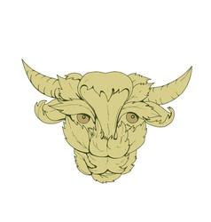 Green bull cow drawing vector