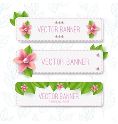 Leaves banner vector image
