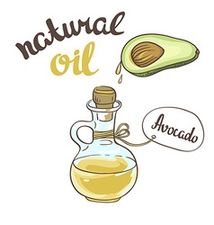 Avocado oil glass bottle vector
