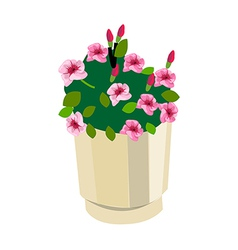 A view of flowers vector image