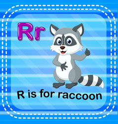 Flashcard letter r is for raccoon vector