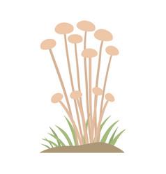 Poisonous mushroom nature food vegetarian healthy vector