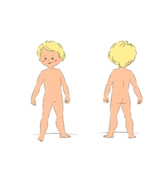 a cute standing naked boy front vector image