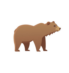 cute bear grizzly vector image vector image