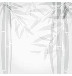 Bamboo trees on white background vector
