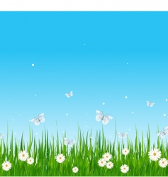 Grassy field and butterflies vector