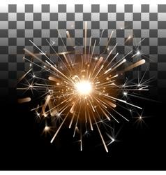 Fireworks on a transparent background vector image