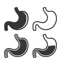 Stomach Icon Set on White Background vector image