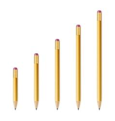 Yellow wooden sharp pencils vector image vector image