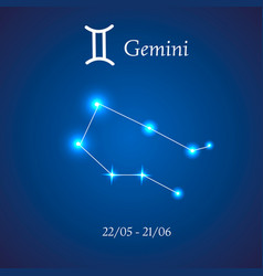 Zodiac constellation gemini the twins vector