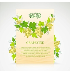 Wine list design with grapes decoration vector