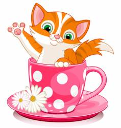 cup cat vector image