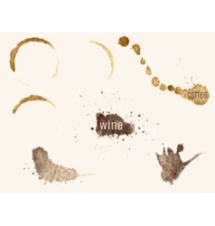 traces of coffee and wine vector image