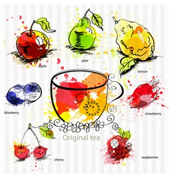 a cup of tea with fruit tea vector image vector image