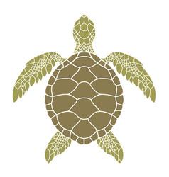 green sea turtle vector image