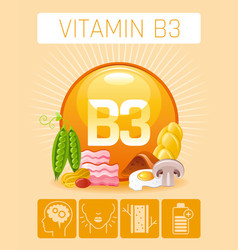 Nicotinic acid vitamin b3 rich food icons healthy vector
