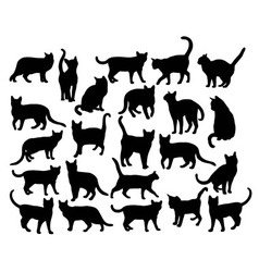 Pet animal silhouettes vector