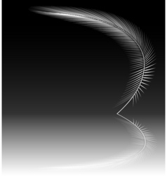 reflecting feather vector image