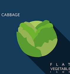 Cabbage flat icon with long shadow vector