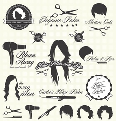 Hair Salon Labels and Icons vector image