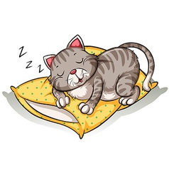 Cat sleeping above the pillow vector