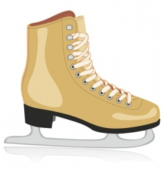 ice skates vector image