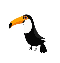 Toucan toco big yellow beak beautiful exotic vector