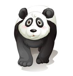 Cartoon Panda vector image