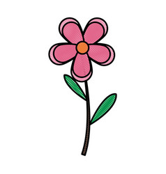 Drawing pink flower spring decoration vector