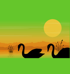 silhouette of swan at sunrise beauty scenery vector image